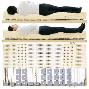 寝ると腰や膝の痛みが解消すると評価されるウッドスプリングベッドとラテックスマットレス男性寝姿勢図