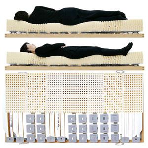 寝ると腰や膝の痛みが解消すると評価されるウッドスプリングベッドとラテックスマットレス女性寝姿勢図