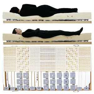 寝ると身体のコンディションが良くなると評価されるウッドスプリングベッドとラテックスマットレス女性寝姿勢図
